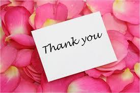 Thank you rose petals