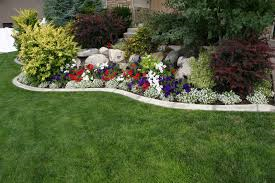 landscaping 15-6-16