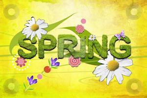 Spring - SL 1 June