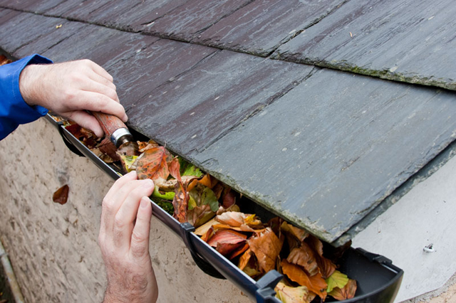 Cleaning leaves out of the gutters 1 Sept 2015