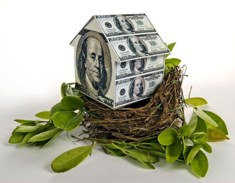 36524468 - residential nest egg concept